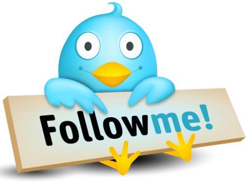 Añadir el botón de Twitter a la página web